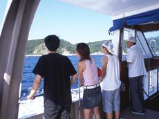 鯛の浦をめぐる遊覧船は房州の観光名所として知られています。